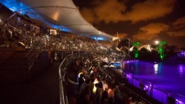Vuelven las Noches del Oceanogràfic a Valencia