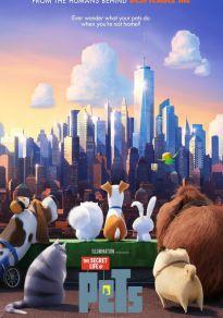 Cartel de la película Mascotas 1 + Evento pet Friendly