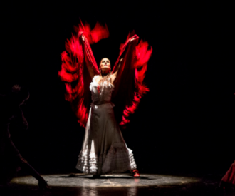 Carmen de Bizet - Ballet Flamenco de Madrid