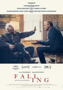 Cartel de la película Falling (2020)