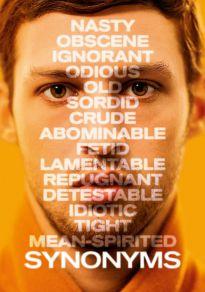 Cartel de la película Sinónimos