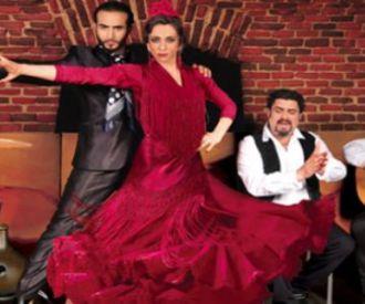 Esencia de Flamenco - Sala Torero de Madrid
