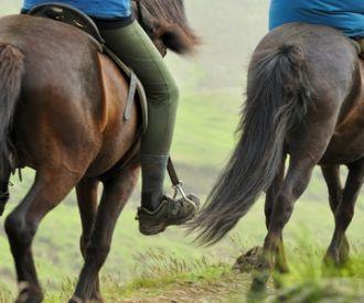 Descubre La Vall de Cardós a caballo y en quad
