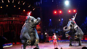 Gran Circo Mundial 1