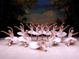 El Lago de los Cisnes - Ballet Clásico de San Petersburgo 2