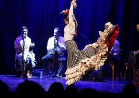 Flamenco Barcelona 2
