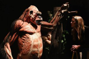 Body Worlds Animal Inside Out 1