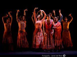 Compañía de Ballet Antonio Gades 1