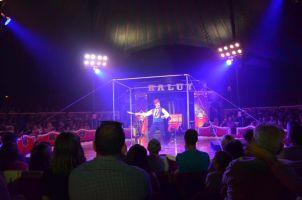 Circo Raluy Legacy  1