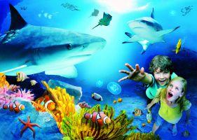 Sea Life Benalmadena 1