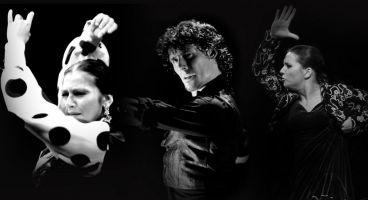 Baile flamenco desde el alma 1