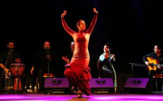 Flamenco Barcelona 1