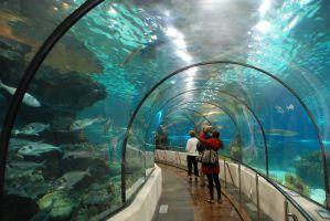 Aquarium Donostia-San Sebastián 2