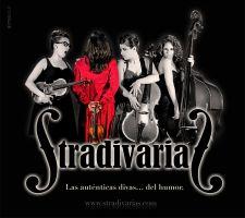 Stradivarias 1