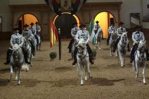 Cómo bailan los caballos andaluces 1