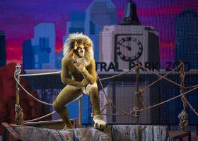 Madagascar, el musical 8