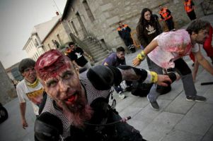 Survival Zombie 1