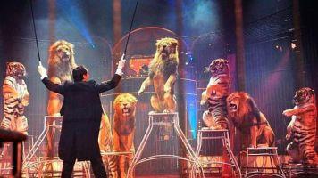 Gran Circo Mundial 4