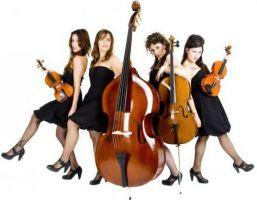 Stradivarias 4