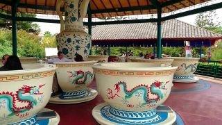 Tea Cups - Portaventura